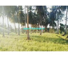 1 acre coconut farm land for sale at Malavalli, 50 mtr from highway