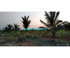 3.5 Acres Farm Land for sale with Coconut Trees at Chiknayakanahalli