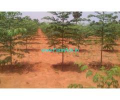 9.11 Acres Farm Land for sale in Tirunveli