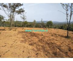 7 acre plain farm land for sale in mudigere, 10 km from city