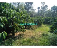 12 acre beautufull robusta coffee  plantation for sale Chikmagalur