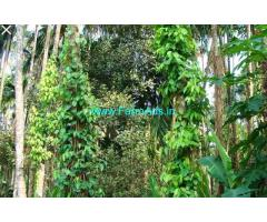 12 acres Well maintained Coffee Estate for sale at  Sakleshpura.