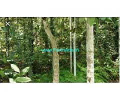 4.5 Acre Land for Sale at Koombara near Kakkadampoyil Waterfalls