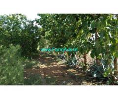 20 Acres of Pure agriculture land is available for sale at near Penukonda