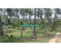 50 Cents Coconut Farmland for Sale near Siruvani Road, Alandurai