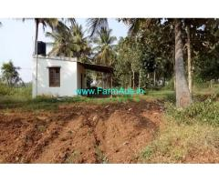 1 Acre 16 gunta coconut farm for sale , at 16 km from Mysore city center