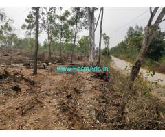 3 Acres Plain farm Land for Sale near Belur, 1km from National Highway