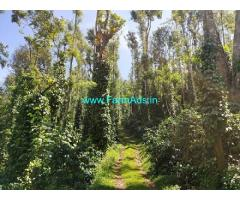 440 Acres Coffee Estate with Homestay for Sale at Chikmagalur