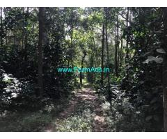 125 Acres Coffee Estate for Sale in Chikmagalur