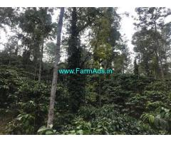 55 Acres Coffee Estate for Sale near Aldur,8km From Highway