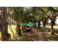 15 Acres Develeped Farm attached to HNSS Canal for sale at Chitoor