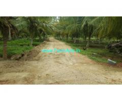 8 Acres Coconut Farm Land with Farm House for Sale near Yediyur
