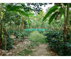 5 Acres Coffee estate for lease-rent Harehosur, shanivarsante, somvarapete