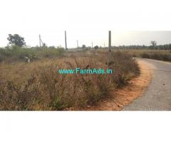 4 Acres Agriculture Land for Sale near Turuvekere,Bellur Cross