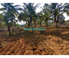 6 Acres Coconut Farm land for sale at Nagamangala taluk . Mandya