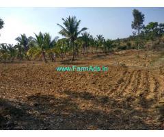 6 Acres Coconut Farm land for sale at Nagamangala taluk . Mandya