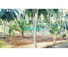 4.35 Acres Coconut Farm Land for sale in Kunjanviali