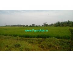 8.5 Acres Coconut Farm with Paddy Land for Sale near Anaipatti