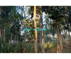 2 Acres Farm Land for sale at Pandavapura, Mandya