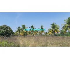 8 Acres 17 Gunta Mango Coconut Farm for Sale Maddur Kunigal highway