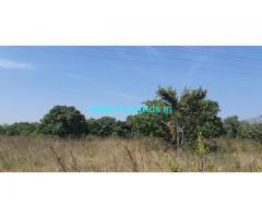 8 Acres 17 Gunta Mango Coconut Farm for Sale Maddur Kunigal highway