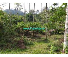 2.5 Acres Agriculture Land for Sale near Mananthavady