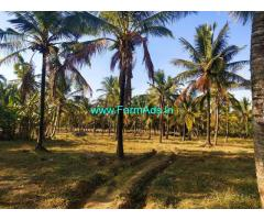 8 Acres Coconut Farm Land for sale at Hassan, 10kms from town on Belur road