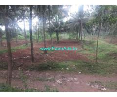 8 Acres Coconut Farm Land for sale at Kozhinjampara