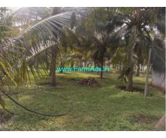 1.3 Acres Coconut Farm Land for sale at Kozhinjampara