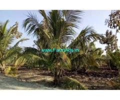 5 Acres developed farm house is for sale, 12 KM from T-Narsipura town