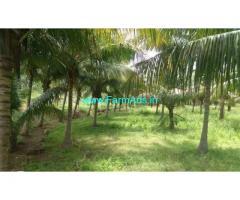 3 Acres Coconut Farm Land for sale in Thunkavi