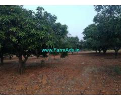 15 acres mango garden with 15 acres agriculture land for sale at Chitoor