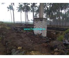 2 Acres Coconut Farm Land for sale at Periyapatti