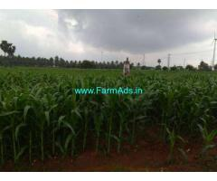 8.5 Acres Farm Land for sale in Kudimangalam,Dharapuram Pollachi Road