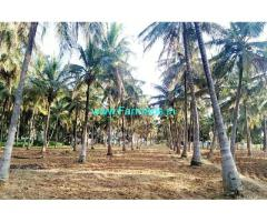 2 acre coconut farm for sale at Channapatna, 2 KM from mysore highway
