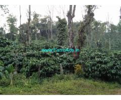 65 acre robusta and arebica plantation for sale