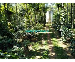 20 acre coffee estate sale in Belur, Hassan district, Close to Highway
