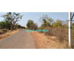 5 Acres Coconut Farm land for sale at Chikmayakanahalli Taluk - Tumkur