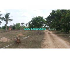 evergreen traditional village