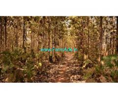 3.7 Acres Farm land for sale near Vandavasi
