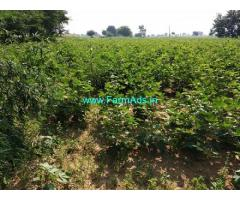 35 Acres Agriculture Land for sale near Jogipet
