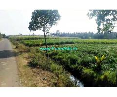 1.30 are plain Agriculture Farm Land for sale at Malavalli