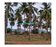 8.5 Acres Coconut Farm Land for sale near Vathalakundu
