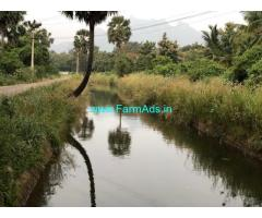 10 Acres Developed Coconut Farm for sale at Nagercoil,