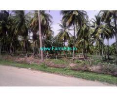 River Touch 1.25 Acres Coconut Farm for Sale at Adakkathode