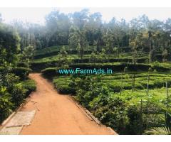 3 Acres Farm land for Sale in Kalpetta