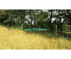 9 Acres Agriculture Land for Sale near Mangaon,Goregaon Mhasala Road