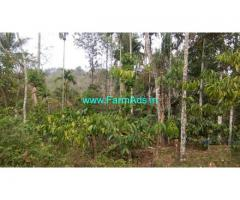 77 Cents Land for Sale at Irulam,Bathery Pulpally State highway