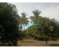 3.15 Acres Mango Farmland for Sale near Nimmanapalli