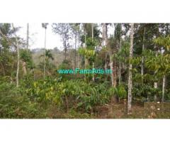 77 cents land for sale at Irulam , Bathery-Pulpally State highway.